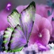 spiritueel medium Faith - beschikbaar