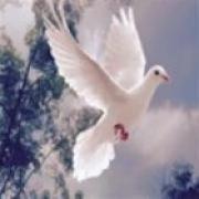 Getuigenissen van spiritueel medium Karen